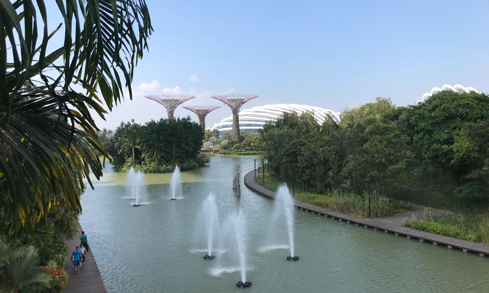 Supertree Groves at Gardens by the Bay, Singapore