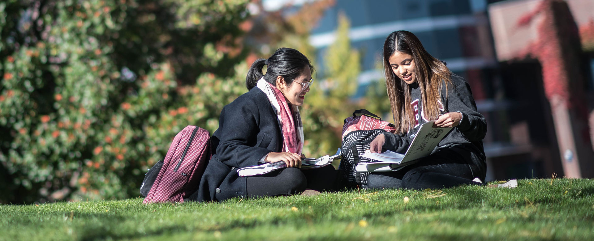 Two female students studying in the courtyard