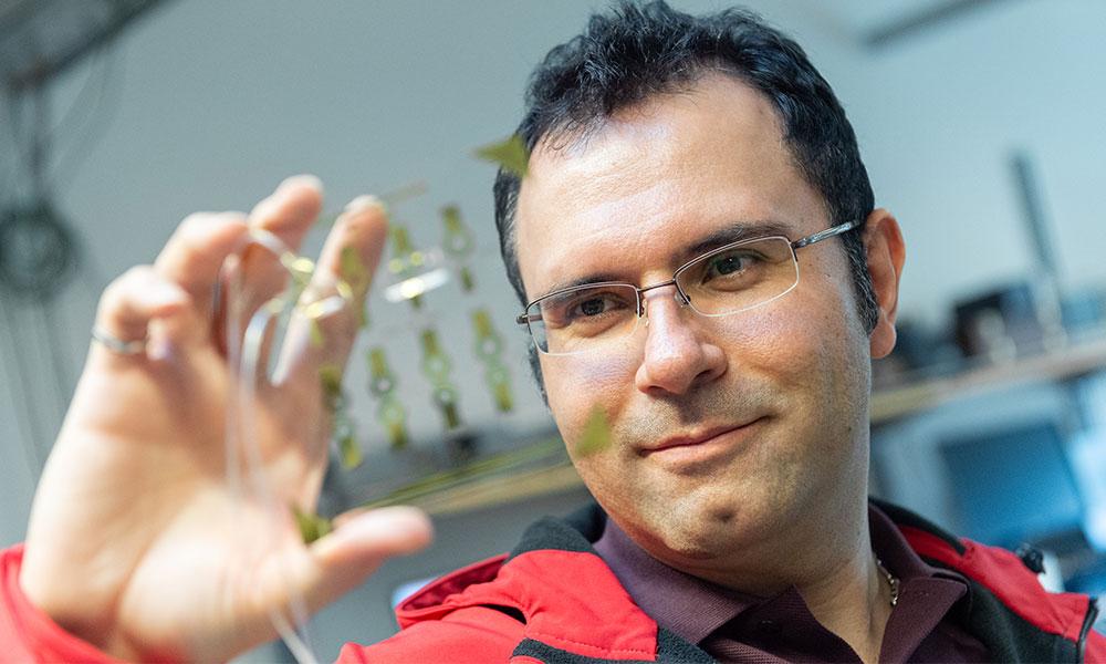 Mohammad Zarifi