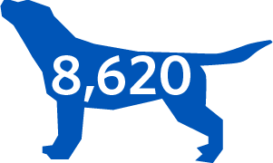 A graphic with the number 8,620