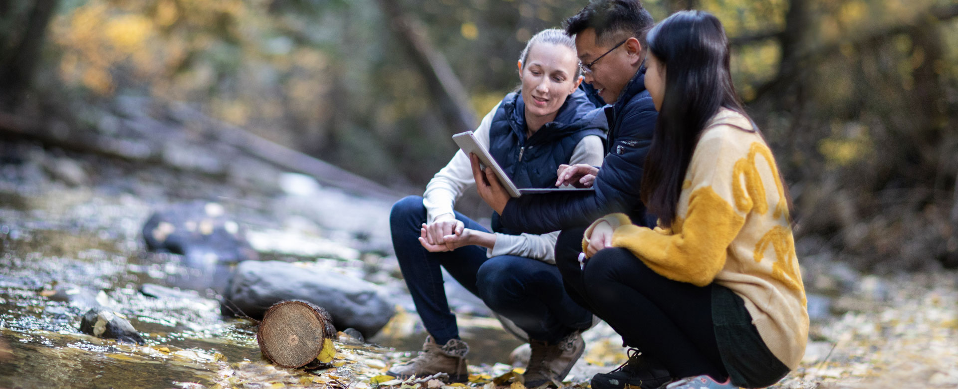 Three students looking at a laptop in the forest