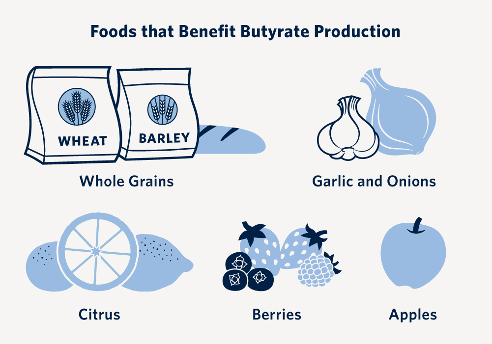 Foods that benefit butyrate production include whole grains, garlic and onions, citrus, berries and apples